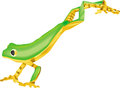 Long green and yellow frog jumping thin illustration on white Royalty Free Stock Photo