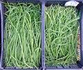 Long Green String Beans Royalty Free Stock Photo