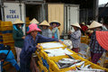 Long hai viet nam july fish is placed in yellow plastic trays transported to wholesale at fishing market man arrange fish plastic Stock Photography