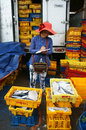 Long hai viet nam july fish is placed in yellow plastic trays transported to wholesale at fishing market women take notes into Royalty Free Stock Photography