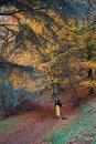Lady in bright yellow trousers dancing in an autumnal autumn / fall forest; yellow, orange, red, green trees