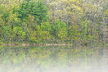 Long lake in fog spring landscape of yankee springs state park michigan usa Royalty Free Stock Photo