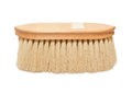 Long natural bristles brush for  horse isolat Royalty Free Stock Photography