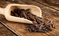Long pepper or piper longum on wooden table Stock Image