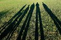 Long shadows of family created by sunset in nature Stock Photo
