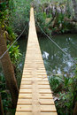 Long suspension walking bridge in tropics looking across a river and along the length of a wooden and steel a tropical forest Royalty Free Stock Image