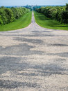 Long Walk Path to Windsor Castle outside of London Royalty Free Stock Photo