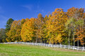 Long white fence farm field and autumn trees peacham vermont united states october roadside view of a horse pasture with a foliage Royalty Free Stock Images