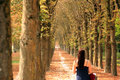 Long wooded path with a woman walking down it in autumn away from the camera in the grounds of fontainebleau chateau Royalty Free Stock Photo