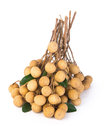 Longan fruit on a background fresh the Stock Photos