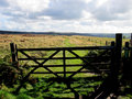 Longshaw Estate, Derbyshire. Royalty Free Stock Photo