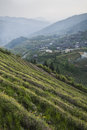 Longsheg rice terraces china view of the aka longji in village in background Royalty Free Stock Photography