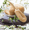 Loofah and body brushes for beauty and exfoliating treatment Royalty Free Stock Photo