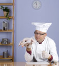 Look at chicken cook in white hat Stock Photography