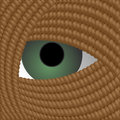 Look through the hole in the coil Royalty Free Stock Photo