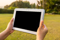 Looking at screen female hand holding digital tablet while Royalty Free Stock Photos