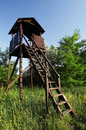 Lookout tower for hunters hidden in the forest Royalty Free Stock Images