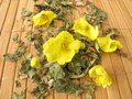 Loose tea with mullein Stock Image