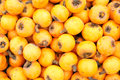 Loquat the background of fruits Royalty Free Stock Images