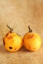 Loquats from organic farming