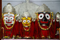 Lord jagannath or jagannatha meaning of the universe is a deity worshipped primarily by hindu people mainly in the indian states Royalty Free Stock Image