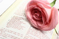 The lord s prayer bible open to with a pink rose on page Stock Images