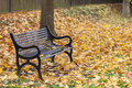 Loss bereavement concept empty park bench or surrounded by trees and golden autumn or fall leaves Royalty Free Stock Photos