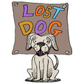 Lost dog an image of a Stock Images