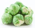 Lot of brussels sprouts on a white background Royalty Free Stock Image