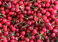 Lot of cherries Royalty Free Stock Photos