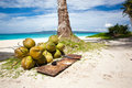 A lot of Coconuts on  beach Stock Images