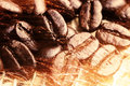 A lot of coffee beans on drapery with sparkles Stock Photography