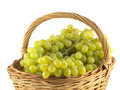 Lot of grape bunches with green berries in wicker basket isolated ripe brown on white close up Stock Images