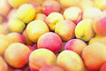 Lot of peaches Royalty Free Stock Photo