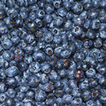 Lots of blueberries (macro) Stock Photo