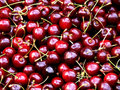 Lots of Cherrys Royalty Free Stock Image