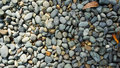 Lots of grey, black, white pebble stone texture background with dried orange leaves