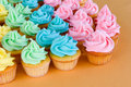 Lots of rainbow cupcakes Stock Photography