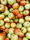 Lots of ripe green apples for cooking background Royalty Free Stock Photo