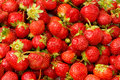 Lots of strawberries arranged Stock Images