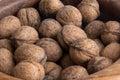 Lots of walnuts Royalty Free Stock Photo