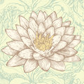 Lotus and abstract floral background Stock Photo