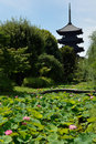 Lotus and buddhist tower in Japan Royalty Free Stock Photography