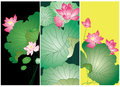 Lotus flower card design chinese style Stock Image