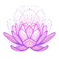 Lotus flower. Intricate stylized linear drawing on white background. Royalty Free Stock Photo