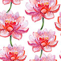 Lotus flower pattern watercolor seamless Royalty Free Stock Photography