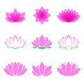 Lotus flower set Royalty Free Stock Photo