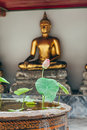 Lotus flower in Thailand monastery with buddah statue background Royalty Free Stock Photo