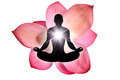 Lotus flower yoga isolated on white background Stock Photos