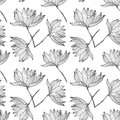 Lotus flowers seamless pattern background black and white Stock Photography